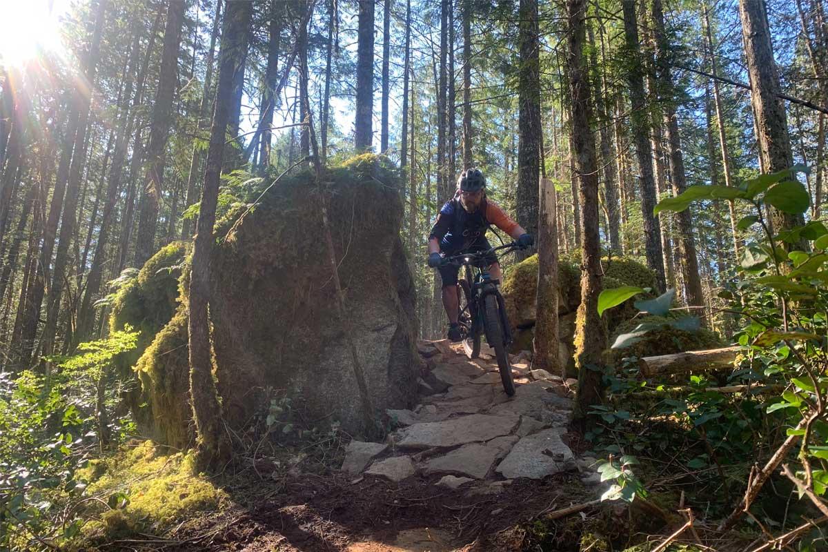 Snowden Forest Mountain Biker